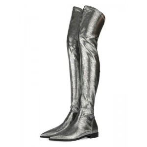 Over The Knee Boots Silver Pointed Toe Winter Boots For Women Fit #10720916196